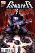 Punisher In the Blood (2010 Marvel) 2