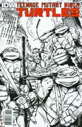 Teenage Mutant Ninja Turtles (2011 IDW) 3C