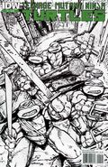 Teenage Mutant Ninja Turtles (2011 IDW) 2F