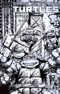 Teenage Mutant Ninja Turtles (2011 IDW) 4C