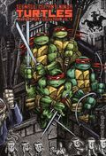 Teenage Mutant Ninja Turtles The Ultimate Collection HC (2011) 3-1ST