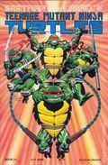 Teenage Mutant Ninja Turtles (1985) 24