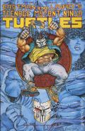 Teenage Mutant Ninja Turtles (1985) 48