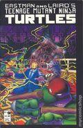 Teenage Mutant Ninja Turtles (1985) 9