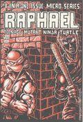 Raphael (1985 Teenage Mutant Ninja Turtles) 1