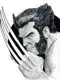 George Perez Wolverine Sketch