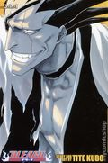 Bleach TPB (2011 3-in-1 Edition) 5-1ST