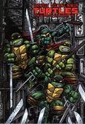 Teenage Mutant Ninja Turtles The Ultimate Collection HC (2011) 5-1ST