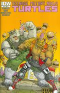 Teenage Mutant Ninja Turtles (2011 IDW) 39RI
