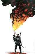 Burning Fields (2014 Boom Studios) 1C