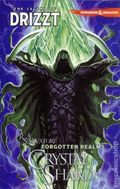 Forgotten Realms The Legend of Drizzt TPB (2015 IDW) Dungeons and Dragons 4-1ST