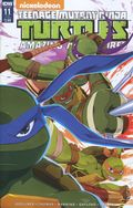 Teenage Mutant Ninja Turtles Amazing Adventures (2015 IDW) 11SUB