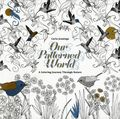 Our Patterned World SC (2016 IDW) A Coloring Journey Through Nature 1-1ST