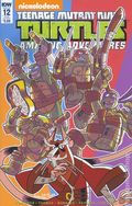 Teenage Mutant Ninja Turtles Amazing Adventures (2015 IDW) 12SUB