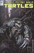 Teenage Mutant Ninja Turtles (2011 IDW) 67SUB