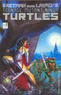 Teenage Mutant Ninja Turtles (1985) 13