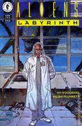 Aliens Labyrinth (1993) 1