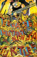 Teenage Mutant Ninja Turtles (1985) 34