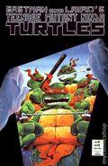 Teenage Mutant Ninja Turtles (1985) 16