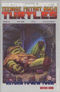 Teenage Mutant Ninja Turtles (1985) 19