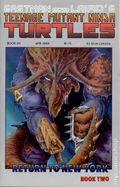 Teenage Mutant Ninja Turtles (1985) 20