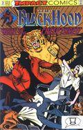 Black Hood (1991 DC) 3