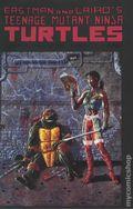 Teenage Mutant Ninja Turtles (1985) 44