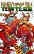 Teenage Mutant Ninja Turtles (1985) 43