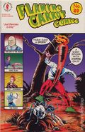 Flaming Carrot (1984 AV/Dark Horse) 29