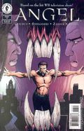 Angel (1999 1st Series) Art Cover 13