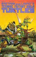 Teenage Mutant Ninja Turtles (1985) 46