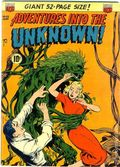 Adventures into the Unknown (1948 ACG) 32