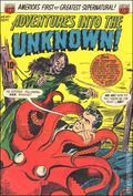 Adventures into the Unknown (1948 ACG) 47