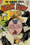 Black Fury (1956 Charlton) 24