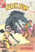 Black Fury (1956 Charlton) 41