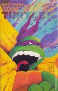 Teenage Mutant Ninja Turtles (1985) 22