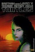 Teenage Mutant Ninja Turtles (1985) 28