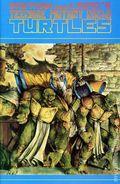 Teenage Mutant Ninja Turtles (1985) 35
