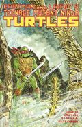 Teenage Mutant Ninja Turtles (1985) 37