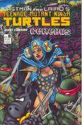 Teenage Mutant Ninja Turtles (1985) 8