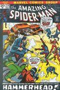 Amazing Spider-Man (1963 1st Series) Mark Jewelers 114MJ