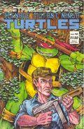 Teenage Mutant Ninja Turtles (1985) 12