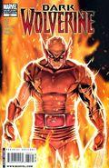Dark Wolverine (2009) 80B