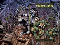 Teenage Mutant Ninja Turtles 2012 Annual HC (2014 IDW) Deluxe Edition 1X-1ST