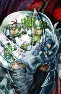 Batman Teenage Mutant Ninja Turtles (2015 DC) 3