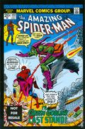 Amazing Spider-Man (1963 1st Series) Marvel Legends Reprint 122