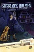 On the Case with Holmes and Watson GN (2010) 5-1ST