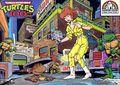 Teenage Mutant Ninja Turtles Jigsaw Puzzle (1987) P-8017