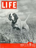 Life (1936) Feb 25 1946