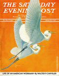 Saturday Evening Post (1821) Vol. 209 #51